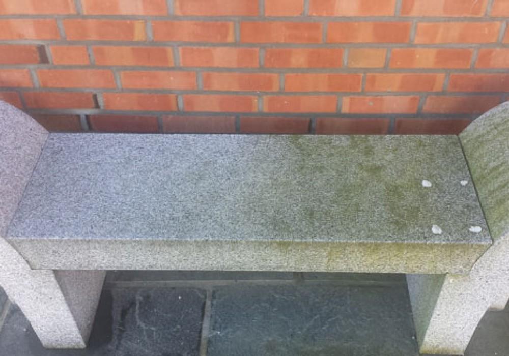 Mosefjerner på stein og granitt